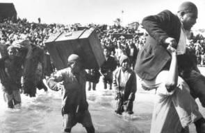 اللجوء الفلسطيني (النكبة)44