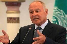 أبو الغيط: تعزيز صمود الشعب الفلسطيني يعد التزاما عربيا ينبغي الوفاء به
