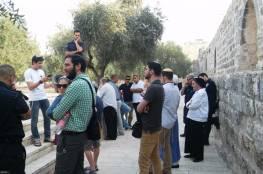 الخليل: مستوطنون ينصبون خيمة بمحاذاة حديقة أثرية في تل الرميدة استعدادا لافتتاحها