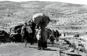 اللجوء الفلسطيني (النكبة)51