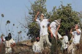 مستوطنون يعتدون على مزارعين شمال رام الله ويضعون أسلاكا شائكة على مساحة 150 دونما