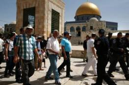 أكثر من 50 مستوطنا يقتحمون المسجد الأقصى