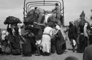 اللجوء الفلسطيني (النكبة)54