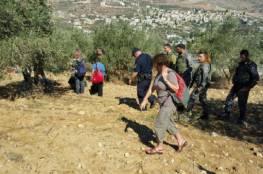 مستوطنون يهاجمون المزارعين في قرية بورين جنوب نابلس