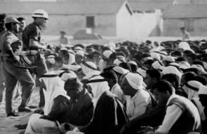 اللجوء الفلسطيني (النكبة)23