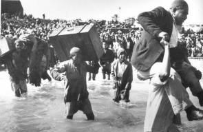اللجوء الفلسطيني (النكبة)87