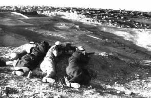اللجوء الفلسطيني (النكبة)50