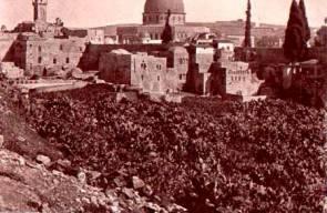 القدس 15