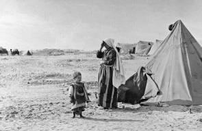 اللجوء الفلسطيني (النكبة)88