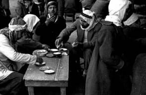 اللجوء الفلسطيني (النكبة)61
