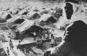 اللجوء الفلسطيني (النكبة)3