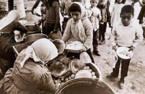 اللجوء الفلسطيني (النكبة)97