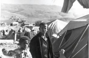 اللجوء الفلسطيني (النكبة)13