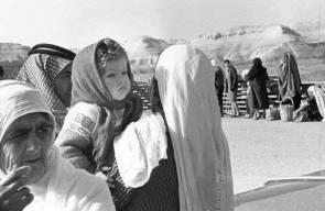 اللجوء الفلسطيني (النكبة)28