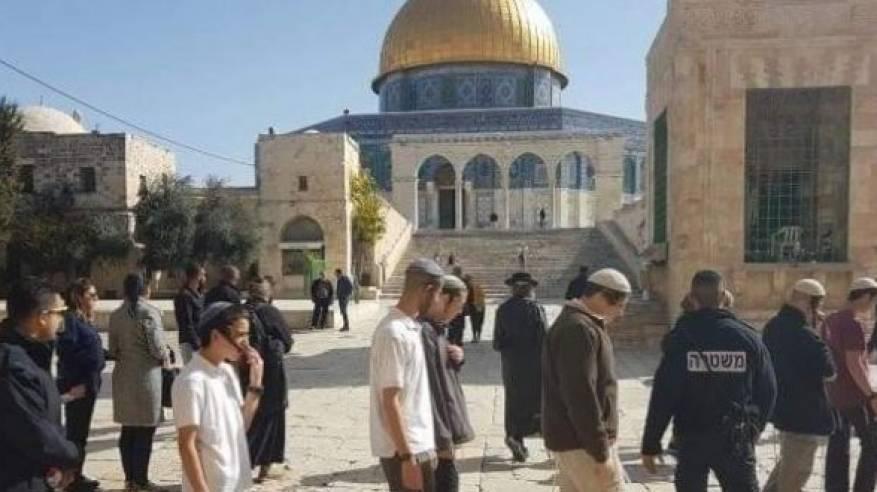 الاحتلال يواصل انتهاكاته: اقتحام المسجد الأقصى وتقطيع غراس زيتون واعتقالات