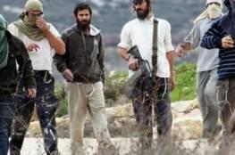 مستوطنون يصعدون من اعتداءاتهم جنوب وغرب نابلس