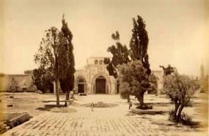 القدس 12