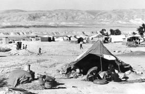 اللجوء الفلسطيني (النكبة)74