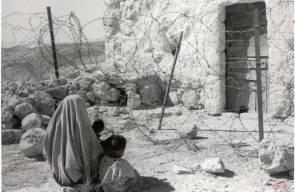 اللجوء الفلسطيني 20