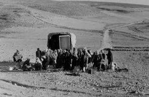 اللجوء الفلسطيني (النكبة)65