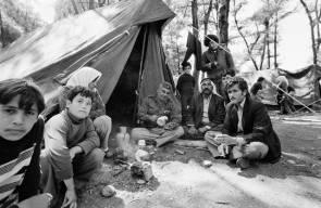 اللجوء الفلسطيني (النكبة)43