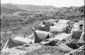 اللجوء الفلسطيني (النكبة)66