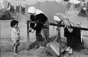 اللجوء الفلسطيني (النكبة)45