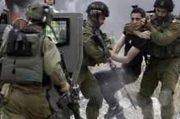 الاحتلال يعتقل 4 فتية من مخيم العروب شمال الخليل