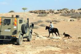 الاحتلال يمنع رعي الاغنام وفلاحة الارض في الأغوار الشمالية