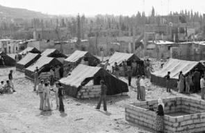 اللجوء الفلسطيني (النكبة)11