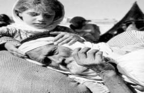 اللجوء الفلسطيني (النكبة)64
