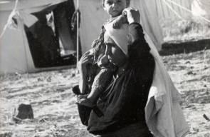 اللجوء الفلسطيني (النكبة)14