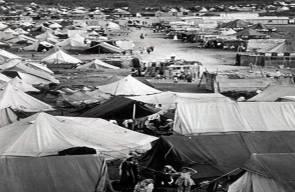 اللجوء الفلسطيني (النكبة)35