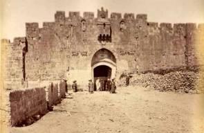 القدس 17