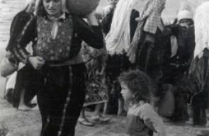 اللجوء الفلسطيني (النكبة)83