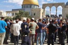 المستوطنون يواصلون اقتحاماتهم الاستفزازية للمسجد الأقصى