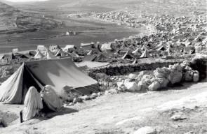 اللجوء الفلسطيني (النكبة)29