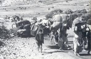 اللجوء الفلسطيني (النكبة)7