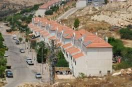 تقرير: محافظة الخليل تتعرض لهجوم استيطاني والمستوطنون يتوسعون في إقامة البؤر الاستيطانية