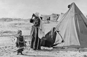 اللجوء الفلسطيني (النكبة)19