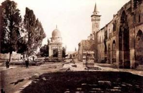 القدس 7