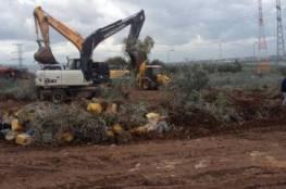 الاحتلال يجرف 14 دونما ويقتلع 320 شجرة غرب الخليل