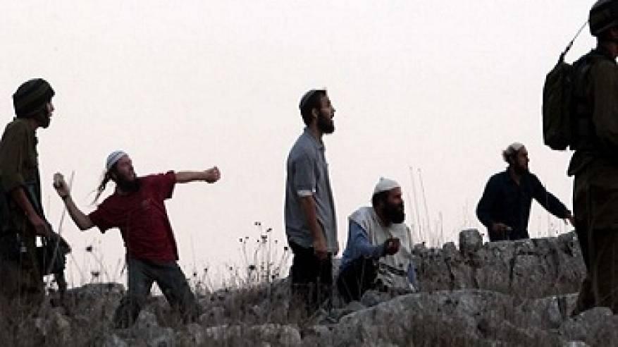 مستوطنون يعتدون على قاطفي زيتون في نابلس